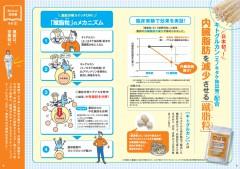 Shushiryu_BB_work